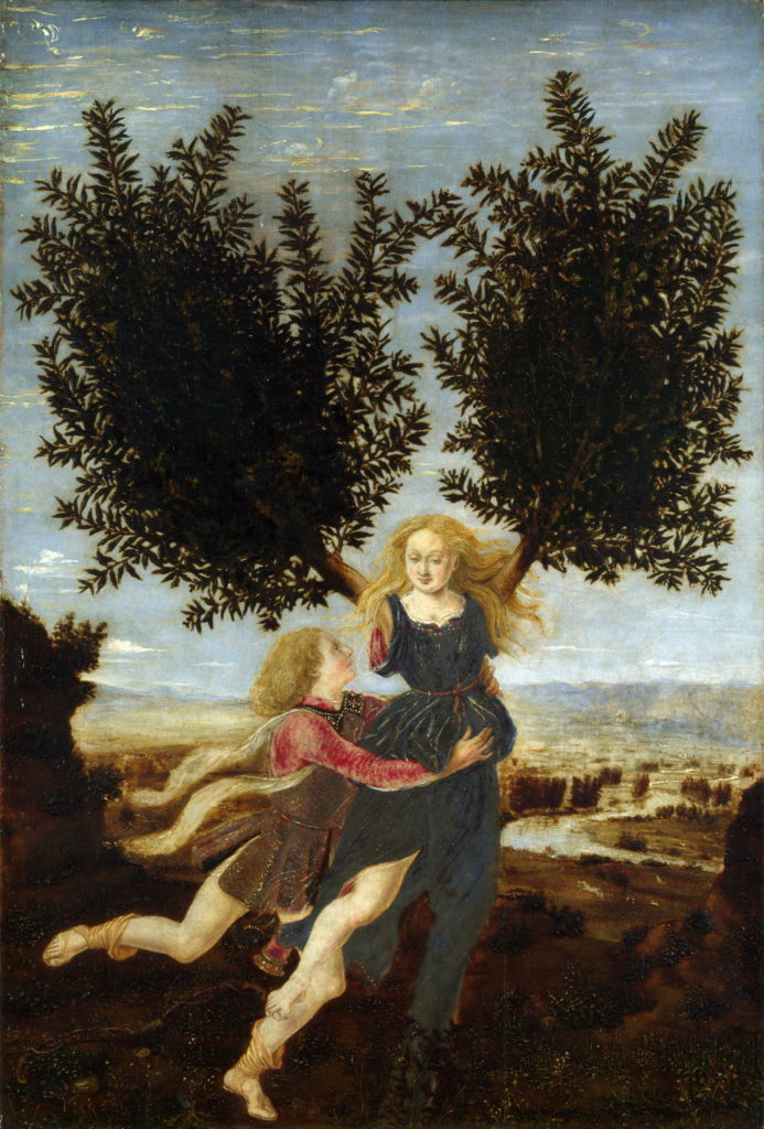Apollo and Daphne • The Greek Myth Story of Daphne and Apollo